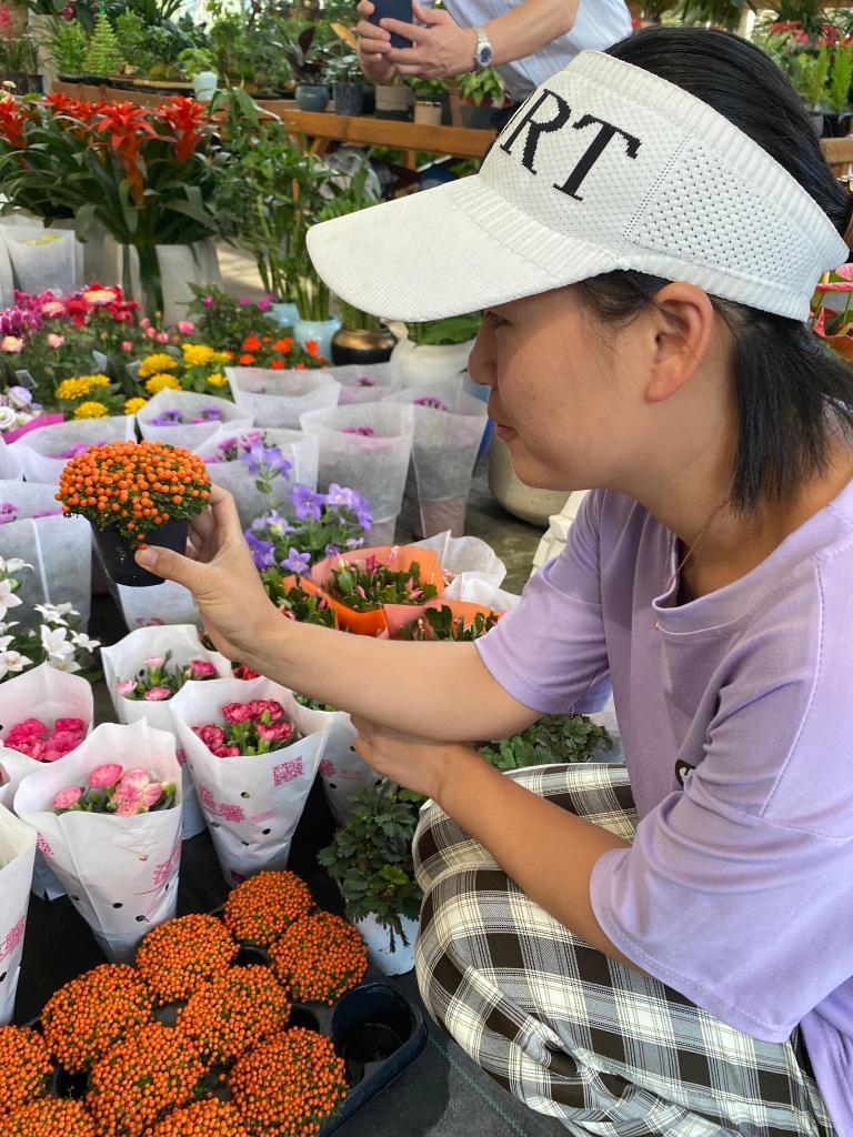 """沪上花卉市场:国庆迎来销售""""小高峰"""""""