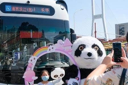 """这个国庆乘坐""""熊猫公交""""打卡滨江美景"""